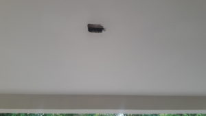 just outside front door on ceiling